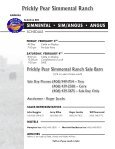 PRICKLY PEAR SIMMENTAL RANCH - Prickly Pear Simmentals - Page 3