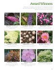 Flowering Shrubs - Proven Winners - Page 5