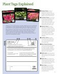Flowering Shrubs - Proven Winners - Page 7