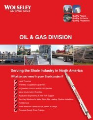 OIL & GAS DIVISION - Wolseley Industrial Group