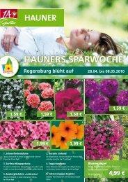 Regensburg blüht auf - 1A Garten Hauner