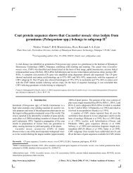 Coat protein sequence shows that Cucumber mosaic virus isolate ...