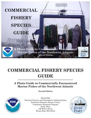Fao species identification guide for fishery purposes western commercial fishery species guide commercial fishery species guide sciox Gallery