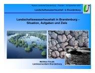 Landschaftswasserhaushalt in Brandenburg ... - Haus der Natur