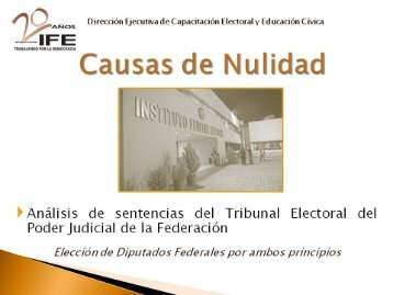 Archivo .pdf 2 Mb 173 págs. - Instituto Federal Electoral