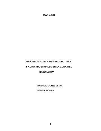 Informe final de consultoría: Procesos y opciones ... - La RED