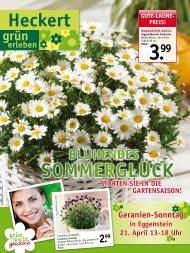 Beilage herunterladen (PDF ~ 1.6 MB) - Heckert Gartencenter