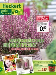 herbstflirt - Heckert Gartencenter