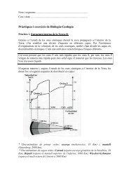 P1. Estructura de la Terra _I - Institut Els Tres Turons