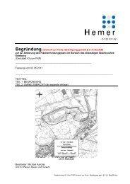 Begründung (Entwurf zur frühz. Beteiligung gemäß § 3 (1 ... - Hemer