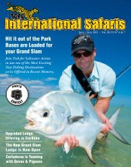 Hit it out of the Park Bases are - Trek International Safaris
