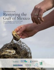 Strategy for Restoring the Gulf of Mexico - Mississippi-Alabama Sea ...