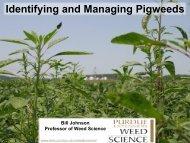 Identifying and Managing Pigweeds - Indiana CCA Program