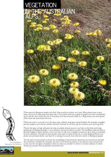 Vegetation in the Australian Alps - Australian Alps National Parks