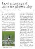 Summer 2011 - Songbird Survival - Page 6