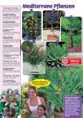 Garantiert - Gartenwelt Oppl - Seite 6