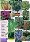 Garantiert - Gartenwelt Oppl - Seite 7