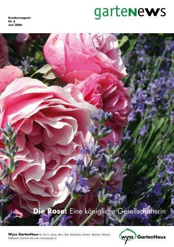Rosen und Lavendel – ein unschlagbares Team - Wyss
