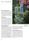 Rosen und Lavendel – ein unschlagbares Team - Wyss - Seite 6