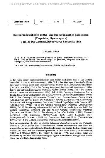 Teil 13: Die Gattung Stenodynerus SAUSSURE