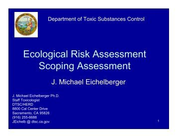 Ecological Risk Assessment (ERA) - the Department of Toxic ...
