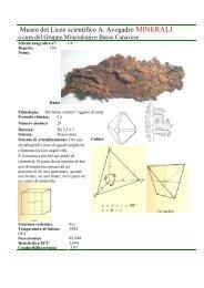 Rame elemento Nativo scheda n 116.pdf - Autistici