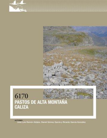 6170 Pastos de alta montaña caliza - Jolube