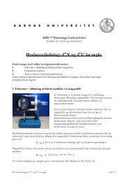 Øvelsesvejledning: δ15N og δ13C for negle. - Institut for Fysik og ...