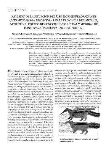 M - Proyecto Conservacion Oso Hormiguero Gigante