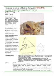 Cuprite Ossido Traversella To scheda n 138.pdf - Autistici