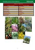 Semillas de la Flora Ibérica - Rocalba - Page 7