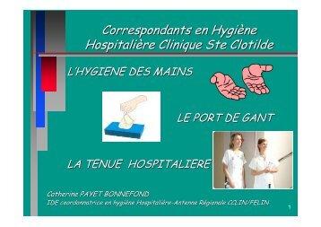 Correspondants en Hygiène Hospitalière Clinique Ste Clotilde - FELIN