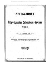 Österreichischen Entomologen - Vereines WIEN.
