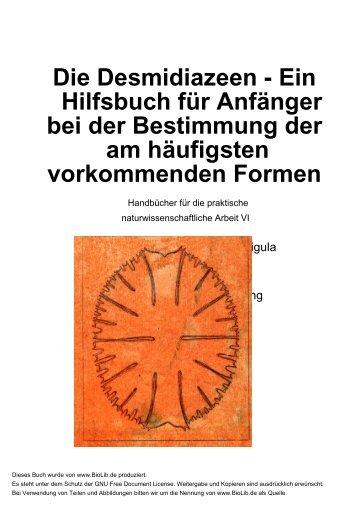 BioLib Document - Kurt Stüber