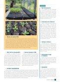 Junho - Sesc - Page 3
