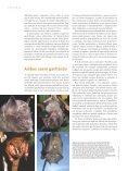 Morcegos e frutos - Ciência Hoje - Page 3