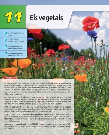 11-Els vegetals-altas.indd - McGraw-Hill