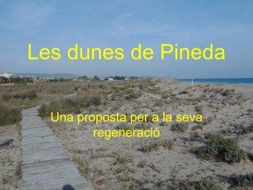 Les dunes de Pineda - Plataforma Salvem la Vall de la Riera