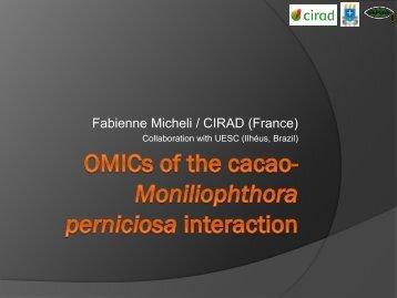 M. perniciosa - Ciba2012