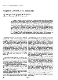 Plague in Central Java, Indonesia - World Health Organization