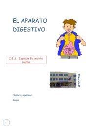 EL APARATO DIGESTIVO - IES Izpisúa Belmonte
