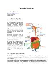 pdf sistema digestivo - Monografias.com
