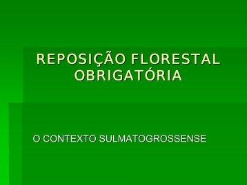 Reposição Florestal Obrigatória - O contexto sulmatogrossente