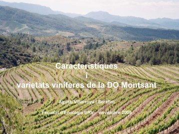 Característiques i varietats viníferes de la DO Montsant