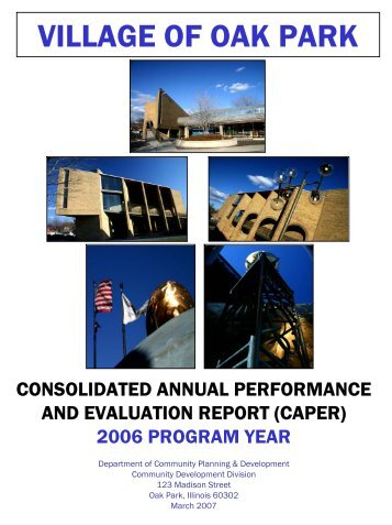 consolidated annual performance and evaluation report