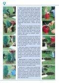 Katalog nejčastěji pěstovaných rostlin v našich podmínkách (PDF) - Page 7