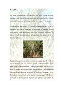 Miel, panela azúcar.pdf - Repositorio UTN - Page 5