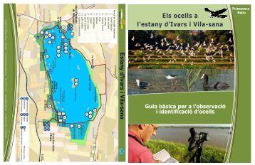 Guia bàsica per a l'observació i identificació d'ocells Primavera Estiu