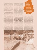 ¥ Tresquarts n¼15 - Infojove - Govern de les Illes Balears - Page 5