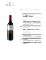 Chile - Cave Wines